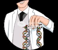 Genetic manipulation dna zoom