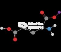 Glutamate molecule