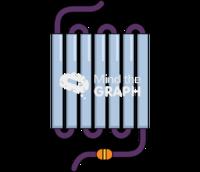 Gpcr receptor adhesion front