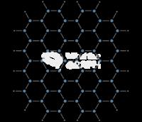 Graphene nanotechnology