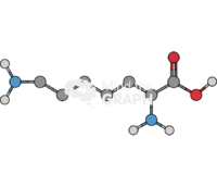 Lysin molecule