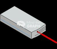 Mai tai tunable laser perspective