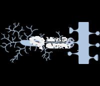 Microglia mediated synaptic