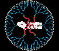 Nanomicelle nanoparticle