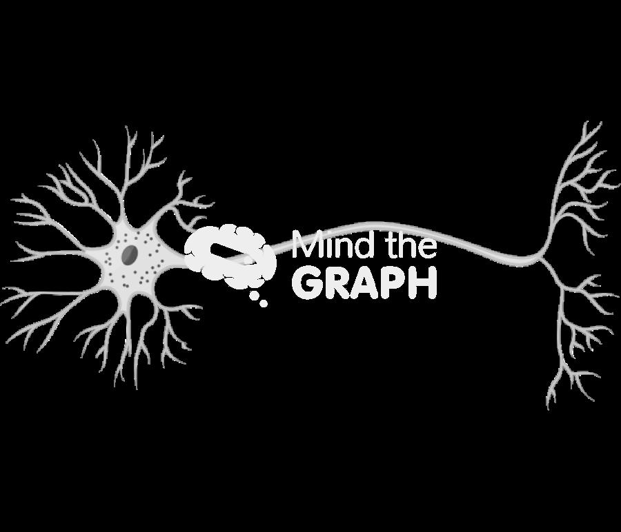 neuron scheme