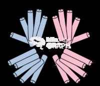 Nfkb receptor structure2