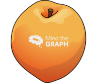 Peach fruit frontal