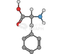 Phenylalanine molecule
