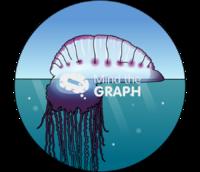 Physalia physalis sea zoom