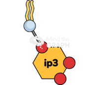 Pip2 molecule simple