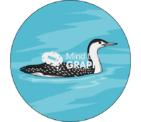 Red throated loon adult nonbreeding swim zoom