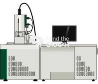 Scanning electron microscope front