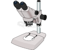 Stereomicroscope perspective