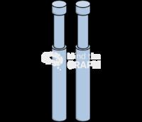 Tirosine kinase receptor perspective