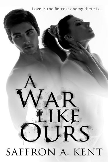 A War Like Ours  by Saffron A Kent