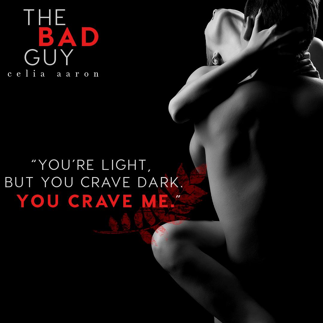 The-Bad-Guy-Teaser-5