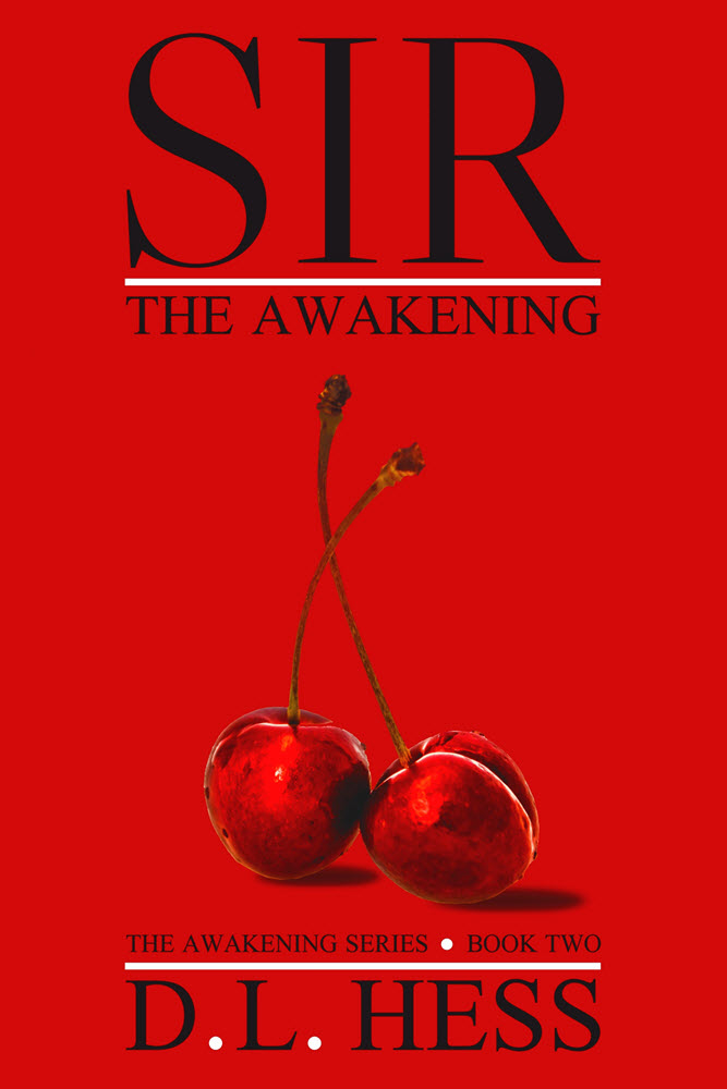Sir: The Awakening by D.L. Hess