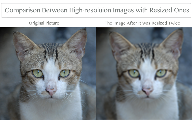 Resizing images in Photoshop can greatly distorts their details