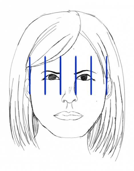 Proportions-Exercise-Human-Face-5-Areas