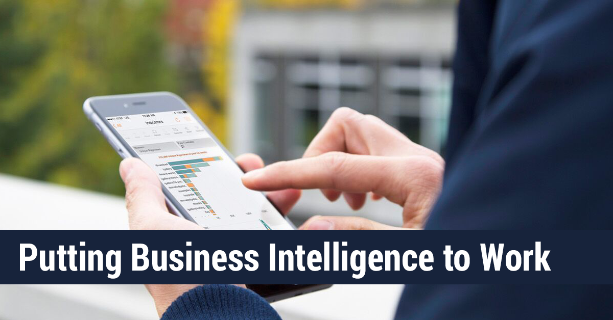 Putting Business Intelligence to Work