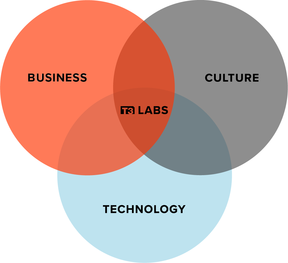 T3 Labs Venn Diagram