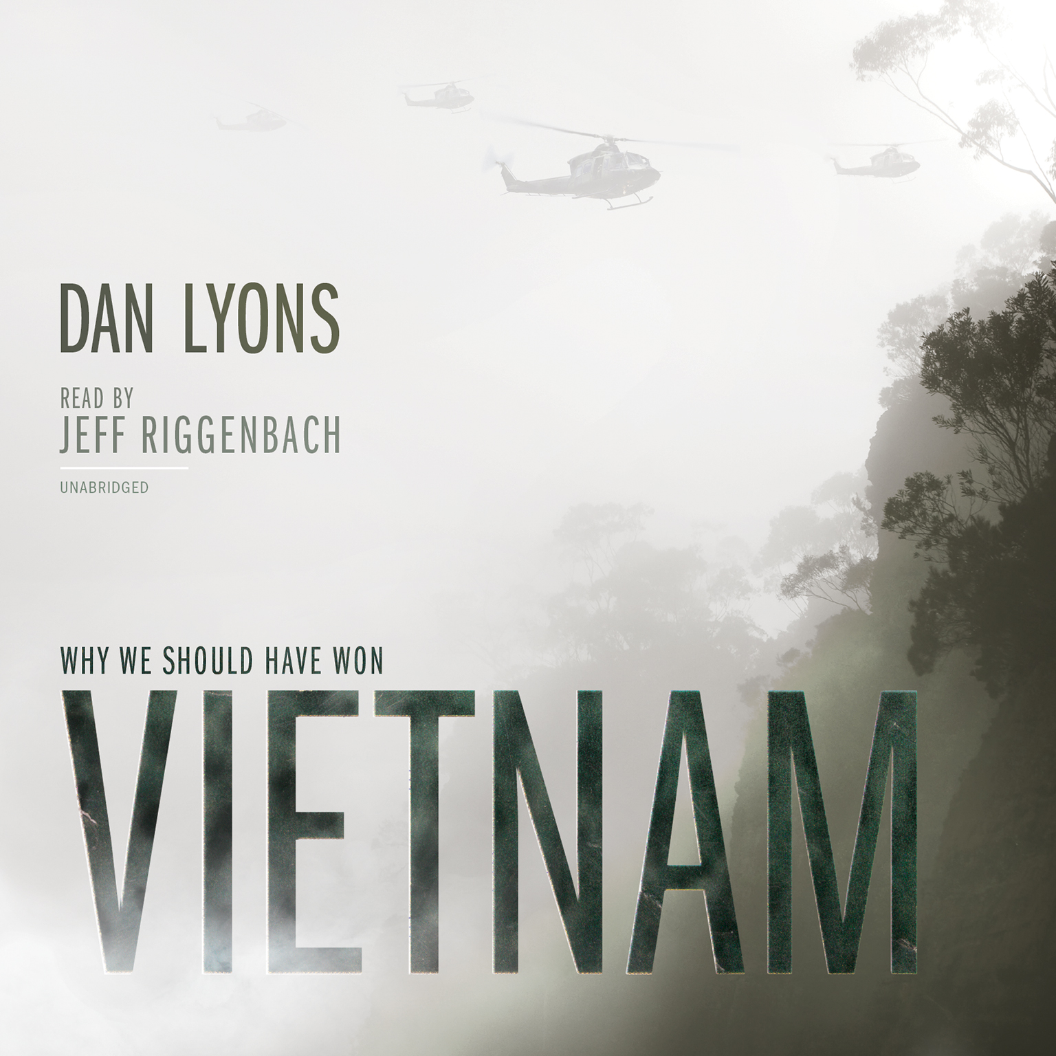 Printable Vietnam: Why We Should Have Won Audiobook Cover Art