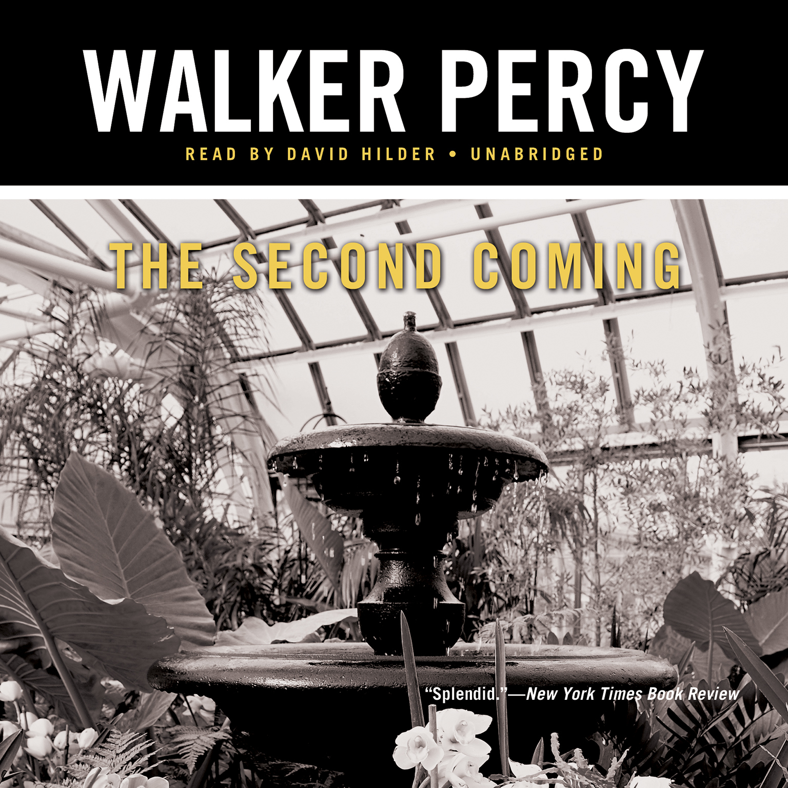 Printable The Second Coming Audiobook Cover Art