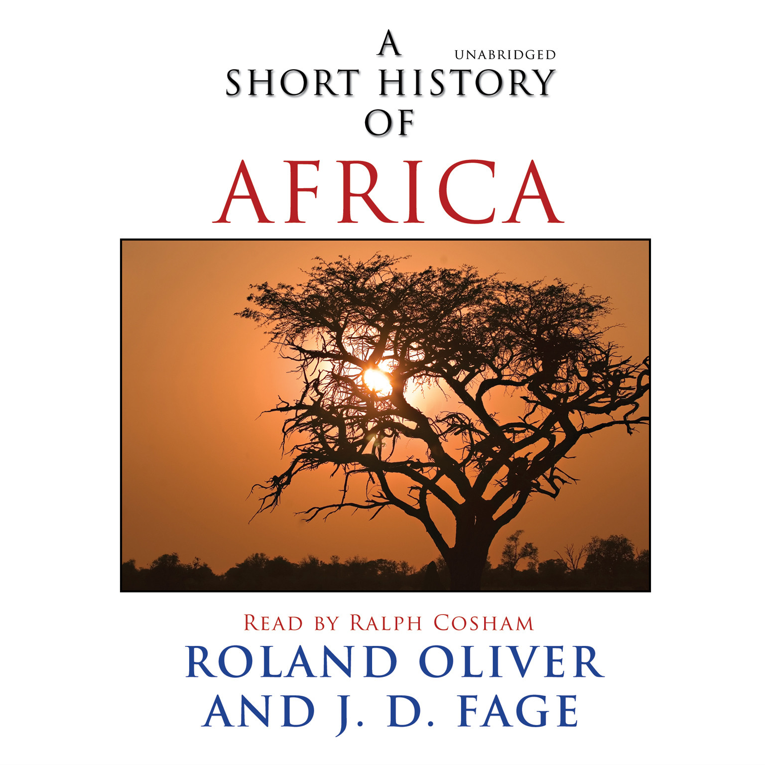 Printable A Short History of Africa Audiobook Cover Art