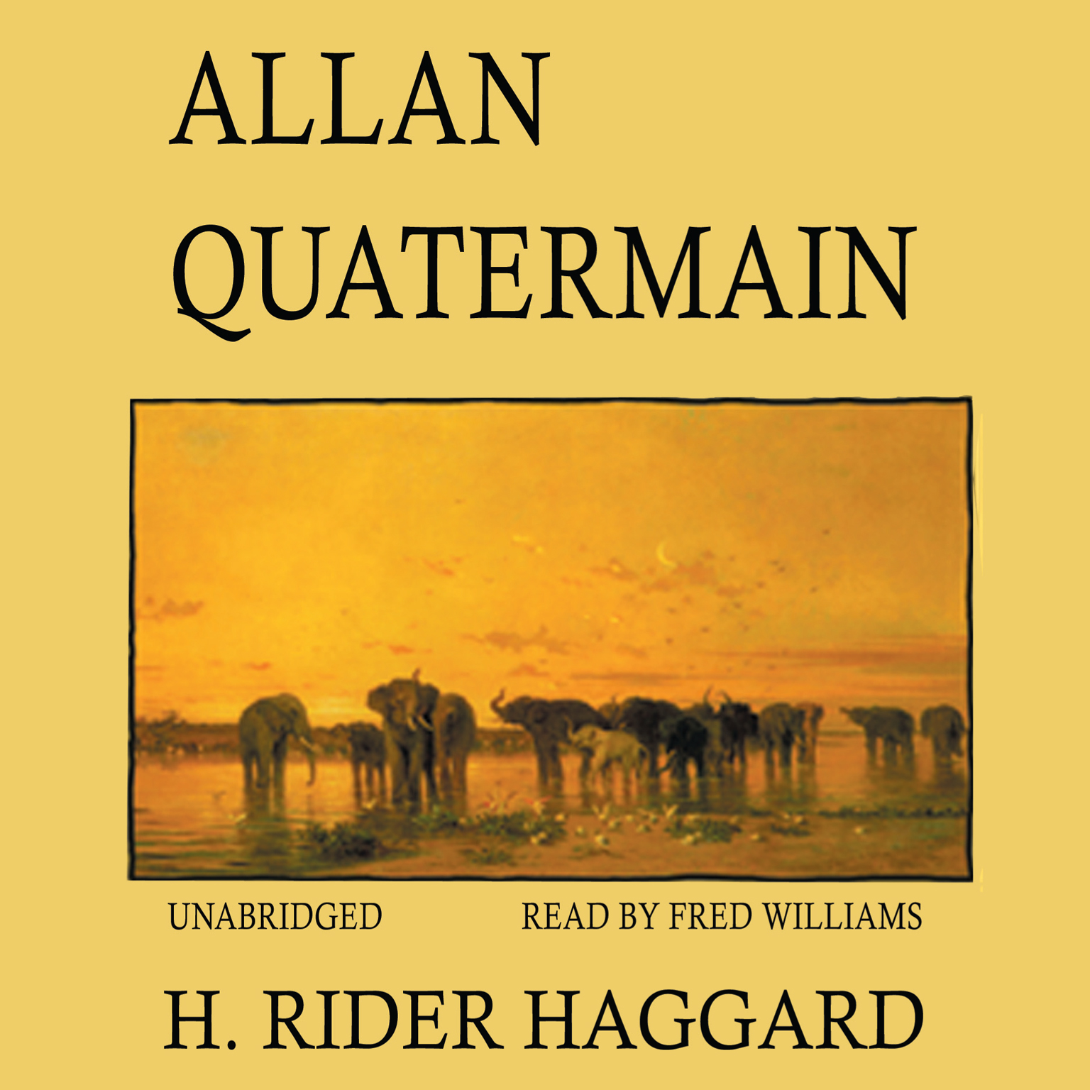 Printable Allan Quatermain Audiobook Cover Art