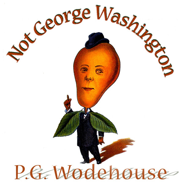 Printable Not George Washington: An Autobiographical Novel Audiobook Cover Art