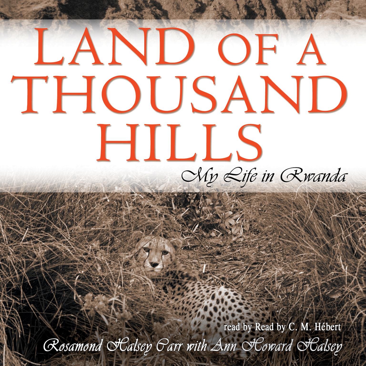 Printable Land of a Thousand Hills: My Life in Rwanda Audiobook Cover Art