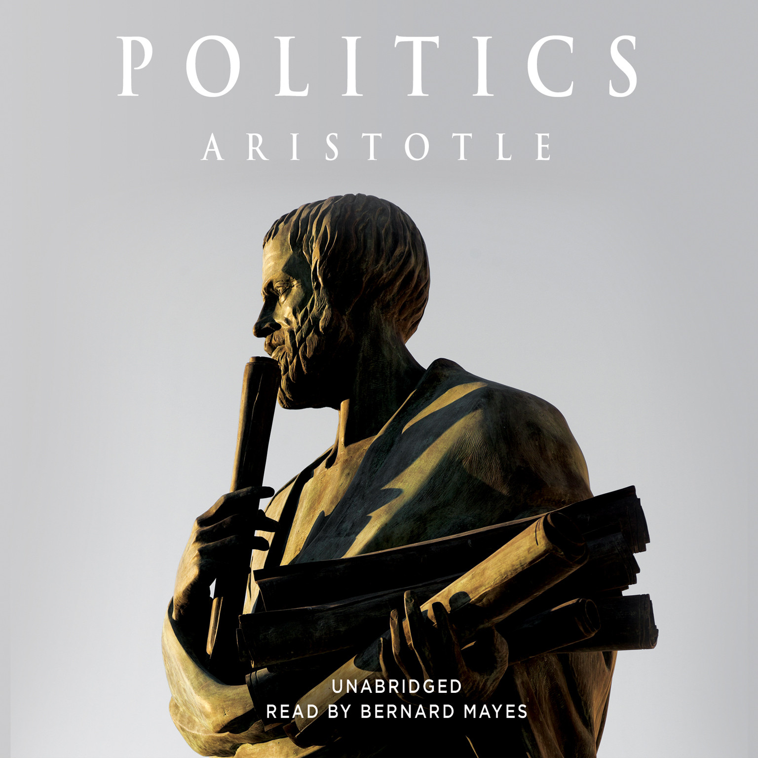Printable Politics Audiobook Cover Art