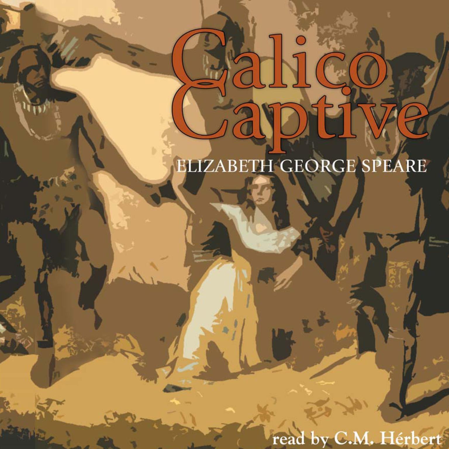 Printable Calico Captive Audiobook Cover Art