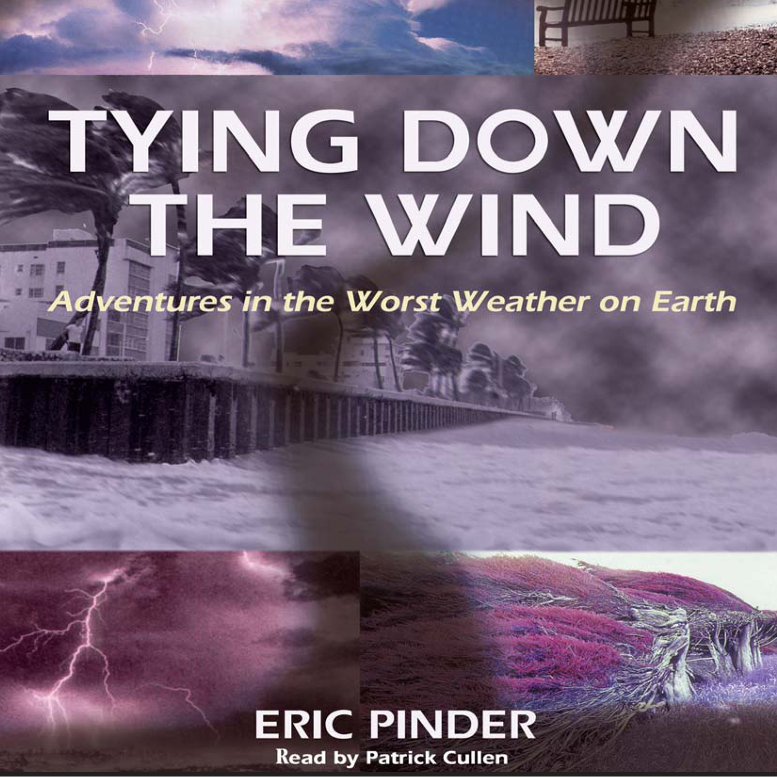 Printable Tying Down the Wind Audiobook Cover Art