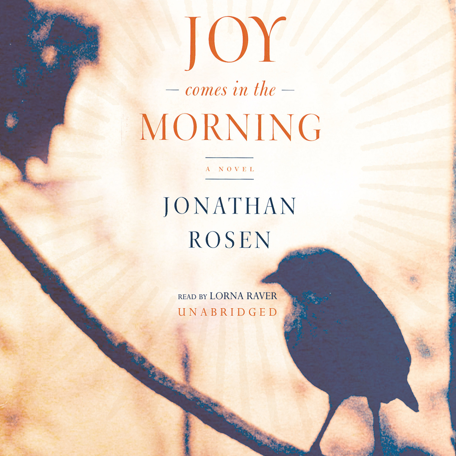 Printable Joy Comes in the Morning Audiobook Cover Art