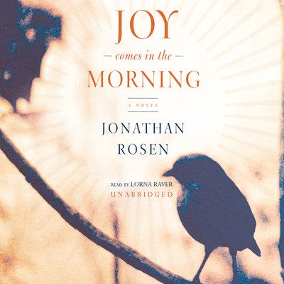Joy Comes in the Morning Audiobook, by Jonathan Rosen
