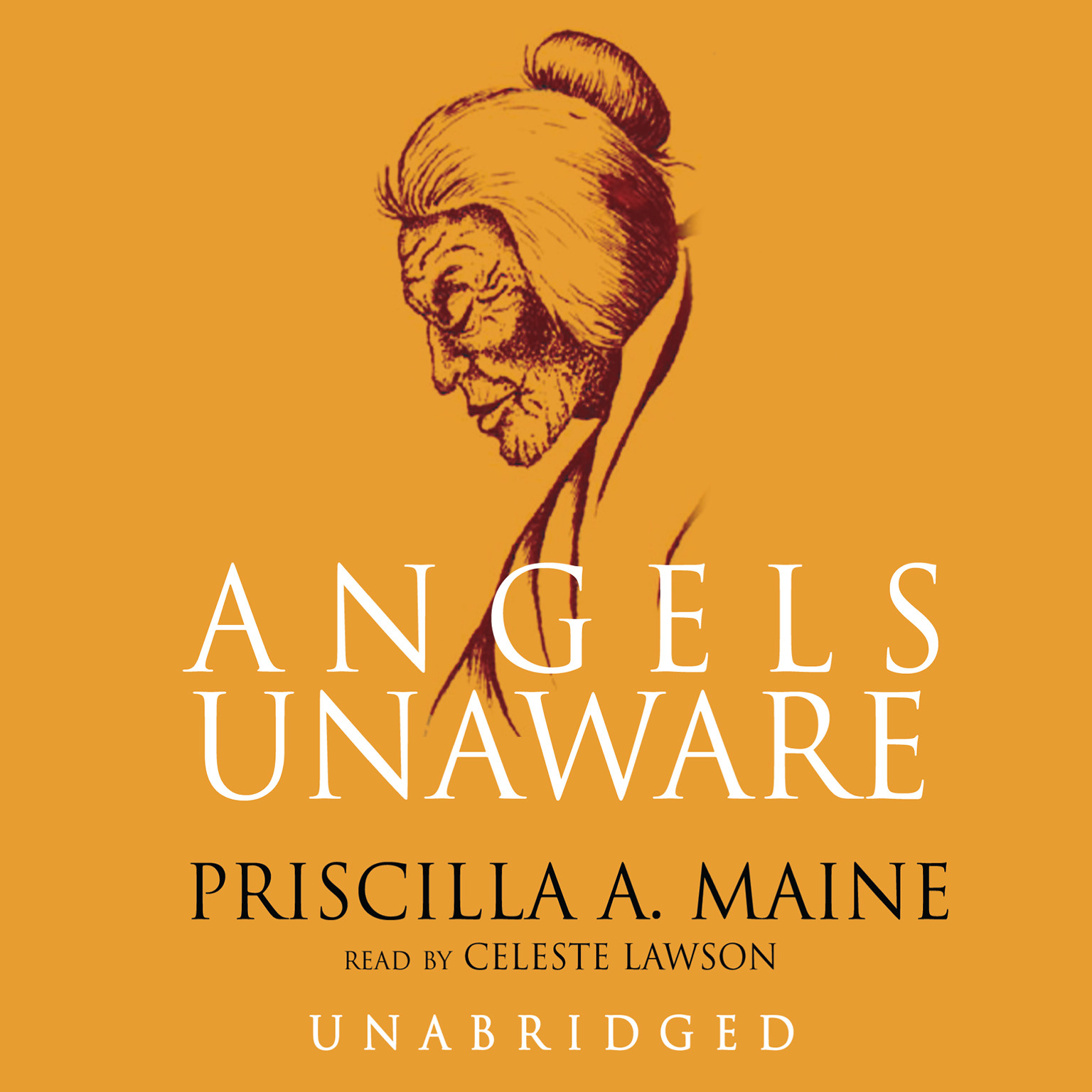 Printable Angels Unaware Audiobook Cover Art