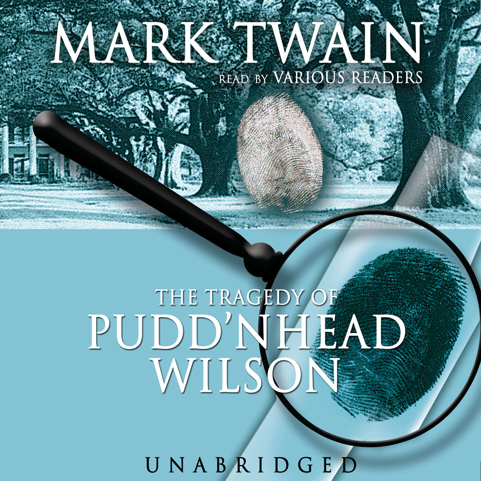 Printable The Tragedy of Pudd'nhead Wilson Audiobook Cover Art