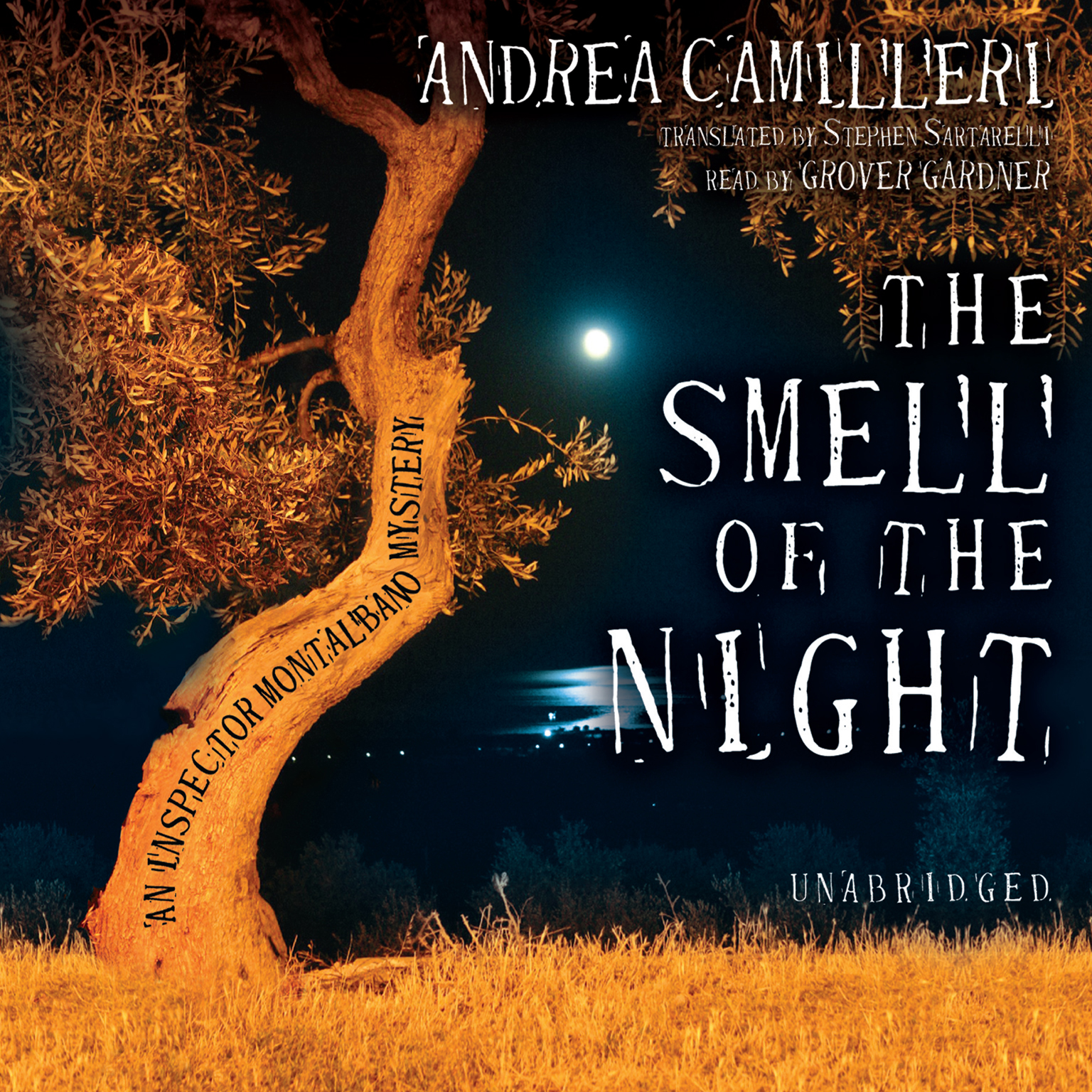 Printable The Smell of the Night Audiobook Cover Art