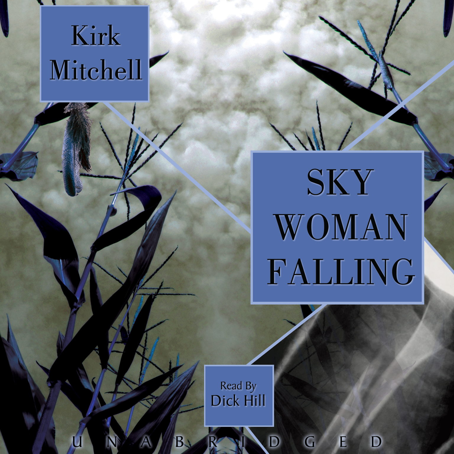 Printable Sky Woman Falling: An Emmett Parker and Anna Turnipseed Mystery Audiobook Cover Art