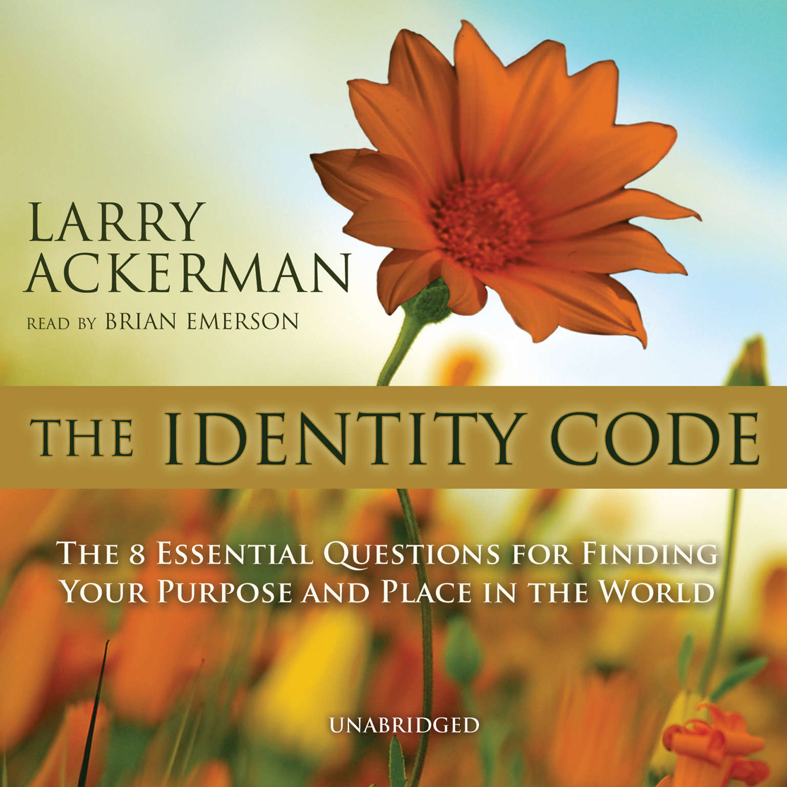 Printable The Identity Code: The Eight Essential Questions for Finding Your Purpose and Place in the World Audiobook Cover Art