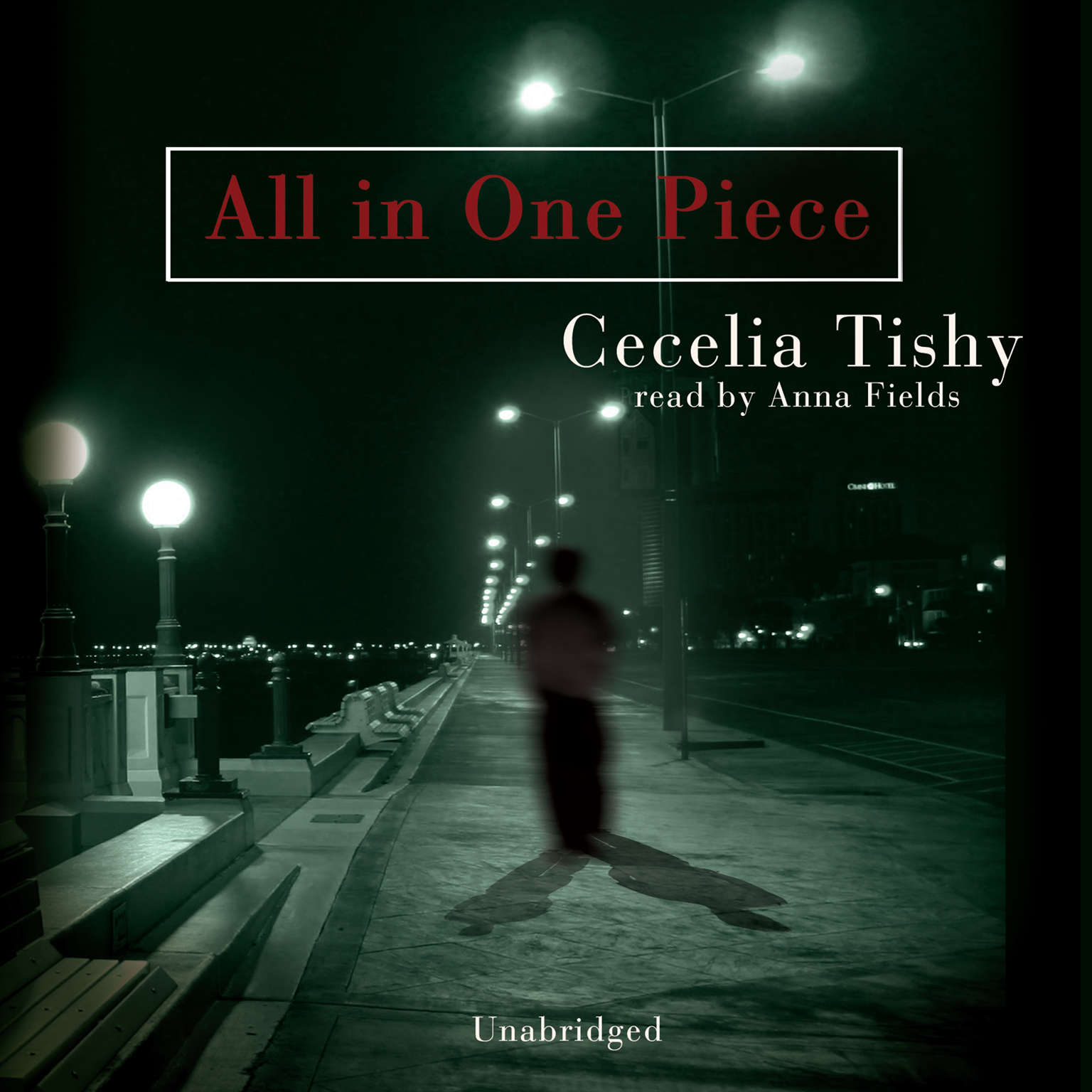 Printable All in One Piece Audiobook Cover Art