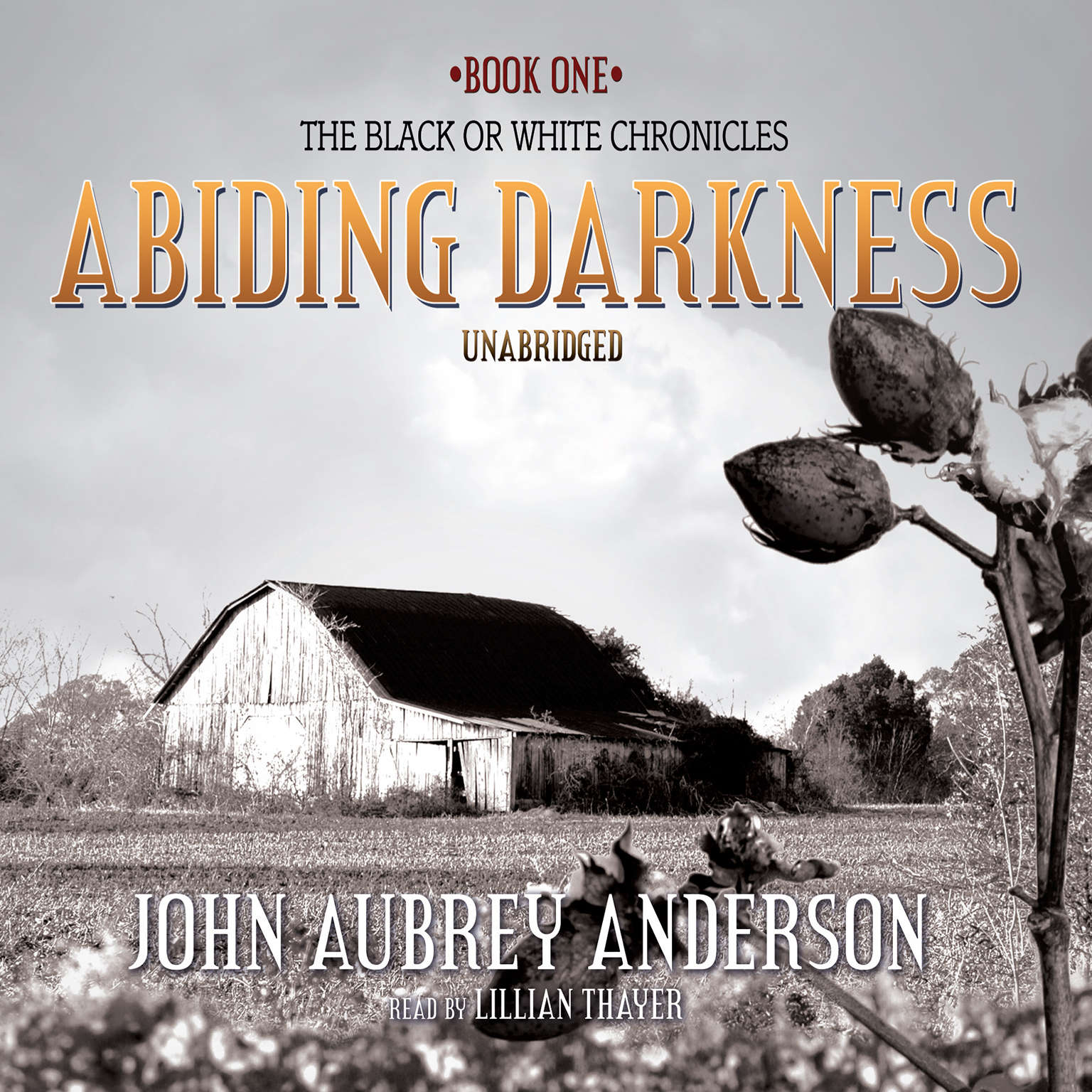 Printable Abiding Darkness: A Novel Audiobook Cover Art