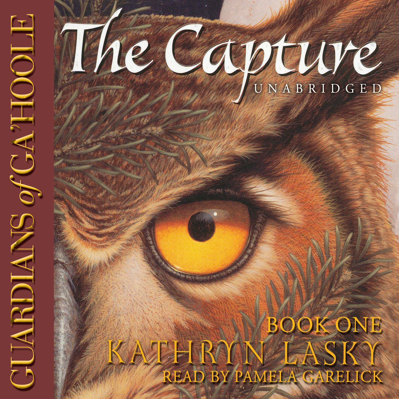 Printable The Capture Audiobook Cover Art