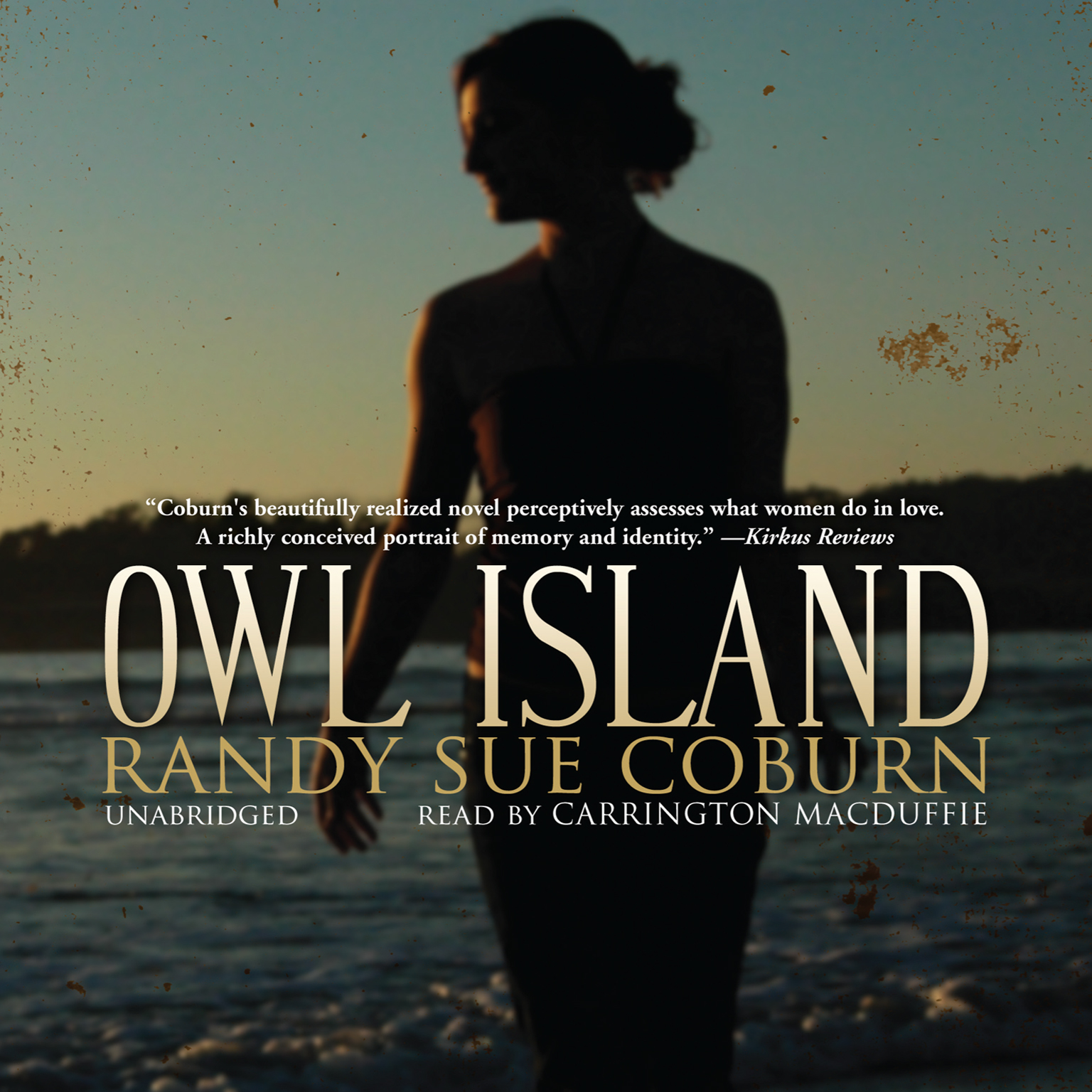 Printable Owl Island Audiobook Cover Art