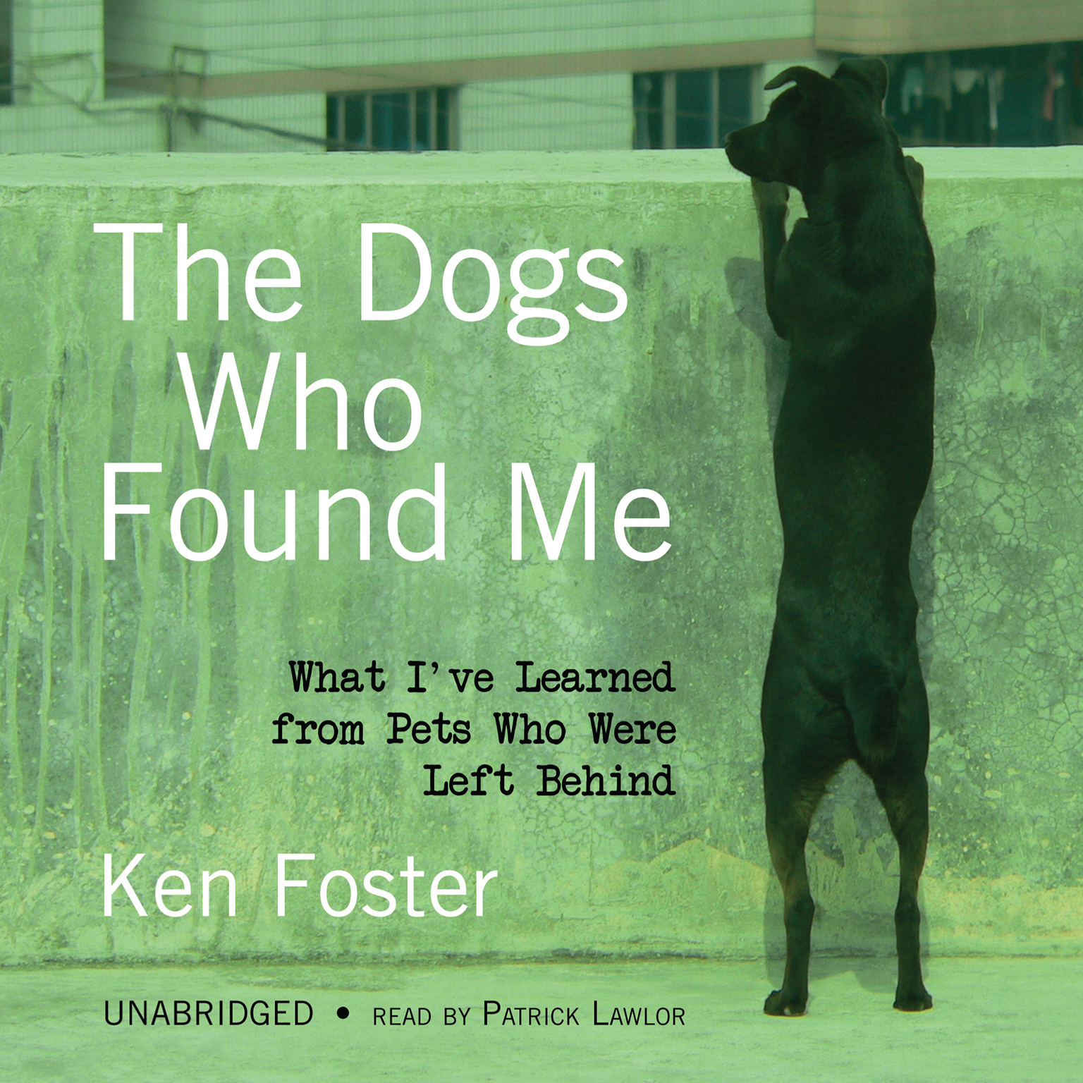 Printable The Dogs Who Found Me: What I've Learned from Pets Who Were Left Behind Audiobook Cover Art