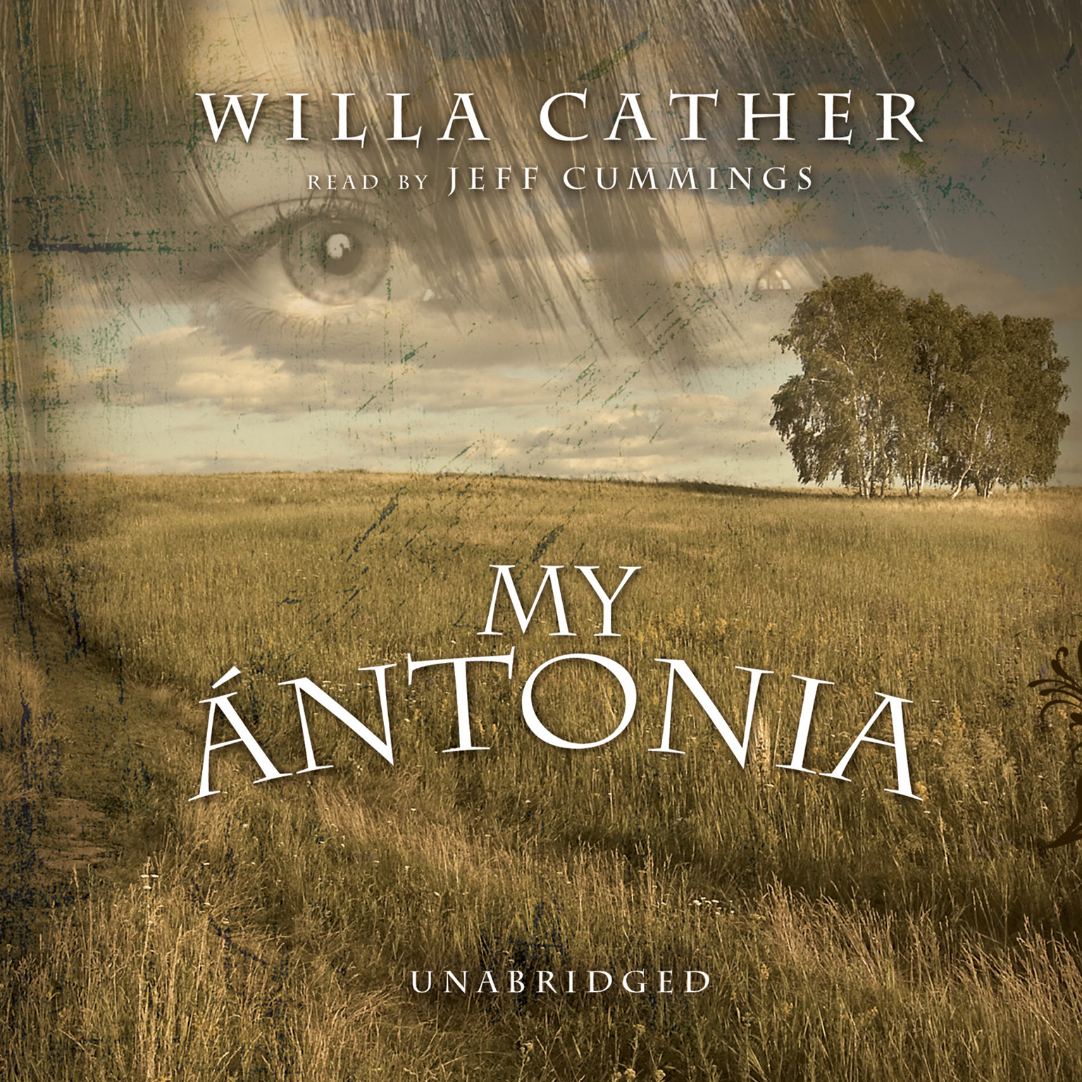the theme of family devotion in the novel my antonia by willa cather