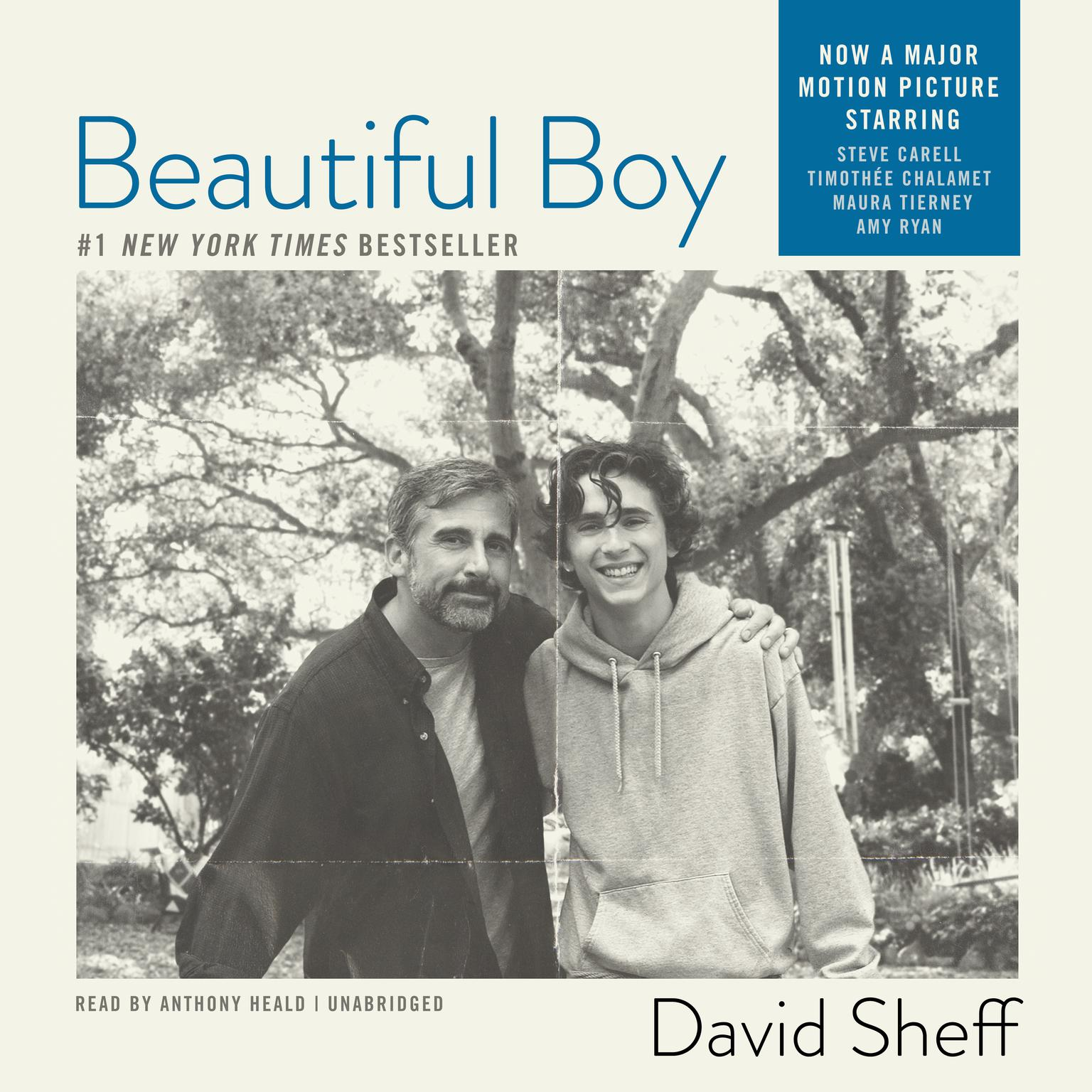 Printable Beautiful Boy: A Father's Journey through His Son's Meth Addiction Audiobook Cover Art
