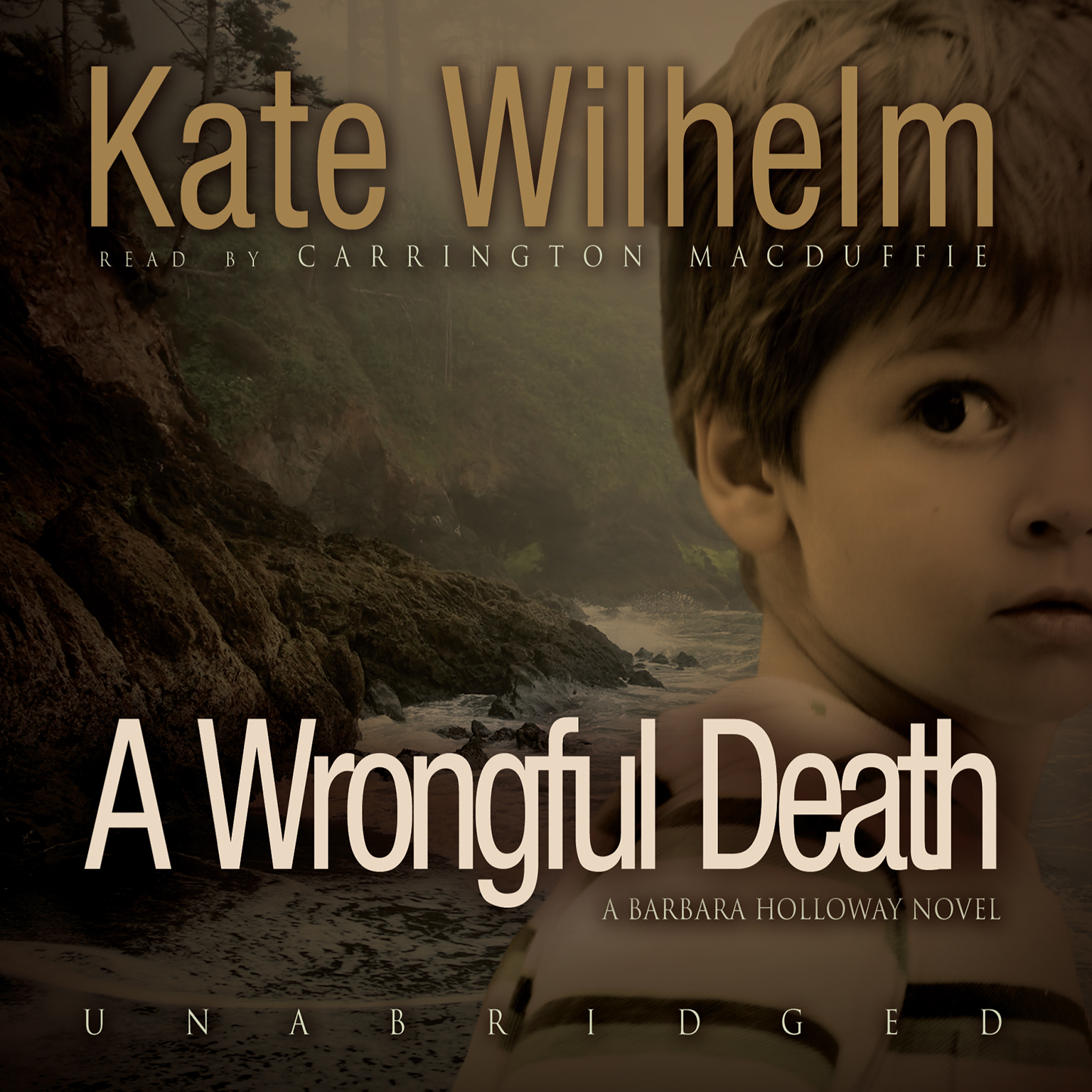 Printable A Wrongful Death Audiobook Cover Art