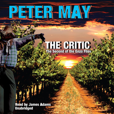 The Critic: The Second of the Enzo Files Audiobook, by Peter May